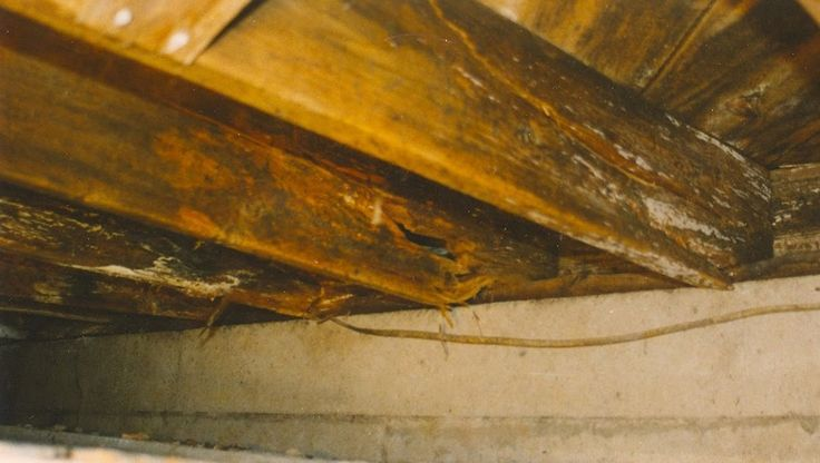 Floor joist rot can occur in a basement crawl space or