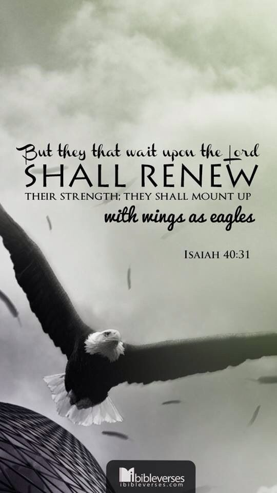 31 Best Images About Home Depot Exterior Doors On: 37 Best Images About ISAIAH 40:31 On Pinterest