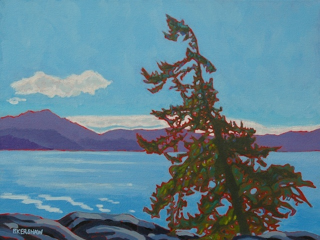 Sooke Basin Fir by kerchpics, via Flickr  Acrylic, 9 x 12, on canvas  Painted on a red canvas ground.  Based on a scene from the Galloping Goose trail overlooking the Sooke Basin.