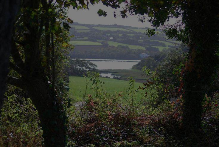 Dinham Farm – Camping & Caravan Holidays in Cornwall |