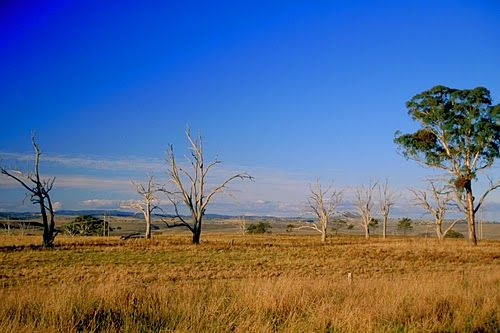 Farmland located in the New England District of New South Wales.