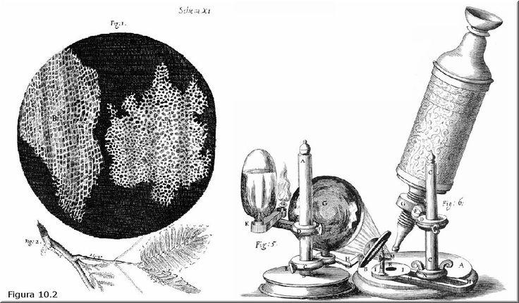 Galileo Galilei Compound Microscope (1610)