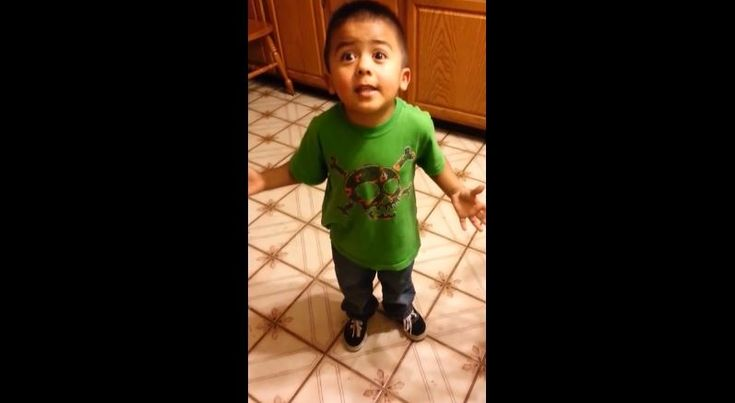 Toddler argues with mother over cupcakes; 'Listen, listen, listen, Linda!'