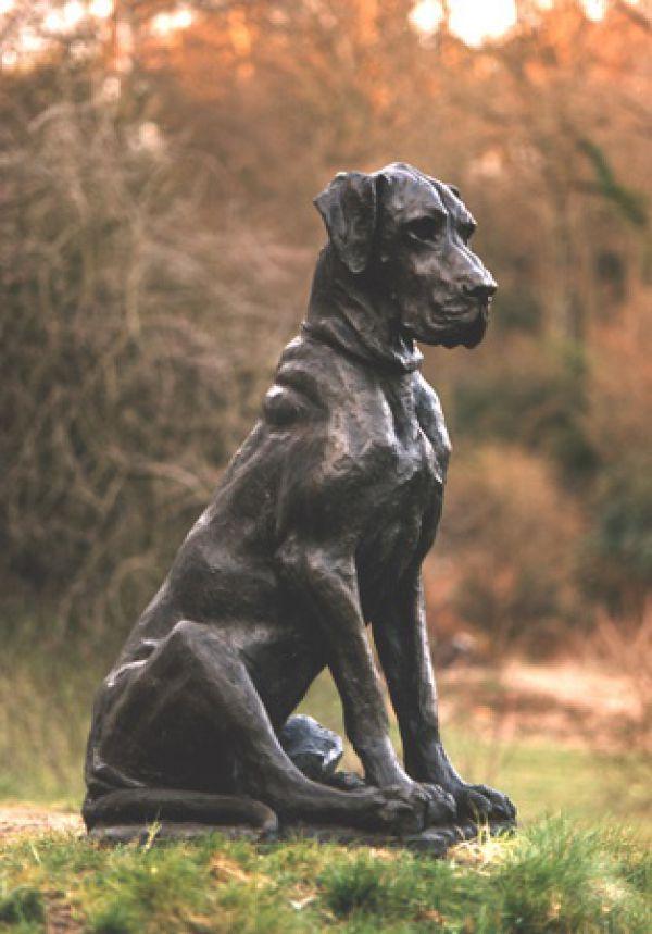 Bronze Garden Or Yard / Outside And Outdoor Sculpture By Artist Lorne  Mckean Titled: U0027Great Dane (life Size Bronze Dog Sculptures/statues)u0027
