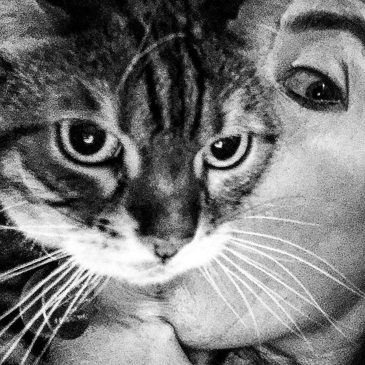 Love hurts! #unhappykitty  #parentsbelike #crazy #friday #funnypics #blackandwhite #selfie #mommydaughter #ladybrennaoffairfax #cat #cats #catsofinstagram #catsagram #catsofworld #kitty #katzenworldblog #cats_of_instagram #catlover #bengal #bengalcat #bengalsofinstagram #bengal_cats #faithhopeloveandlucksurvivedespiteawhiskeredaccomplice #vais4bloggers #vafoodie #foodblog #foodblogger #virginia