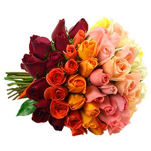 Flores Online Floricultura: Envio de Flores, Cestas e Presentes