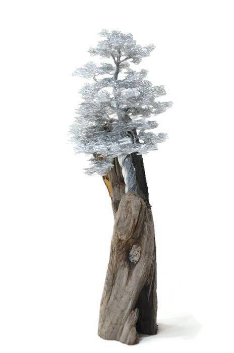 Driftwood Sculpture / Driftwood Art / Driftwood Bonsai / Wire