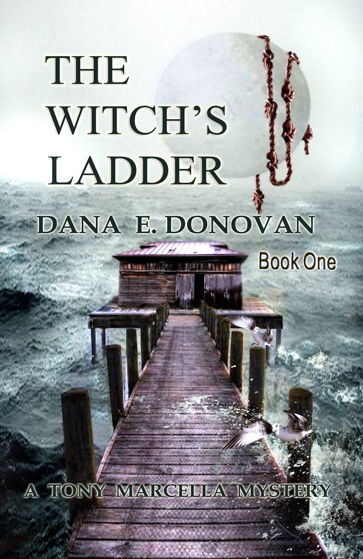 Dana Donovan Book 1 The Witch's Ladder