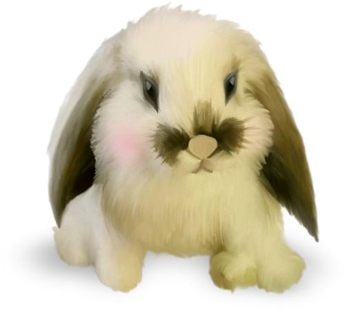 skrap_klipart - «NLD Rabbit sh.png» on Yandex