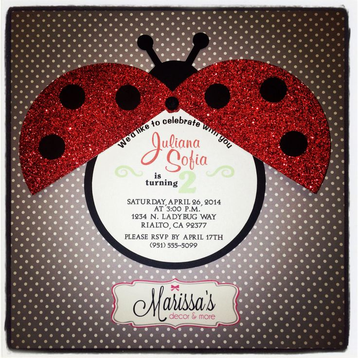 Lady Bug Theme Party