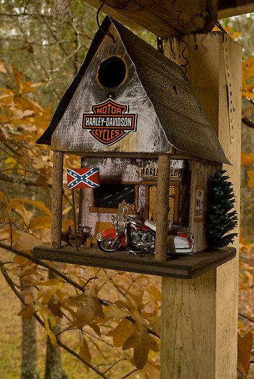 "Fall At The Biker Bird Hotel by Arthur ""Butch"" Petty But we don't know if it is cat proof !!"