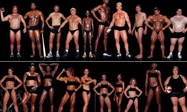 variety in fit bodies