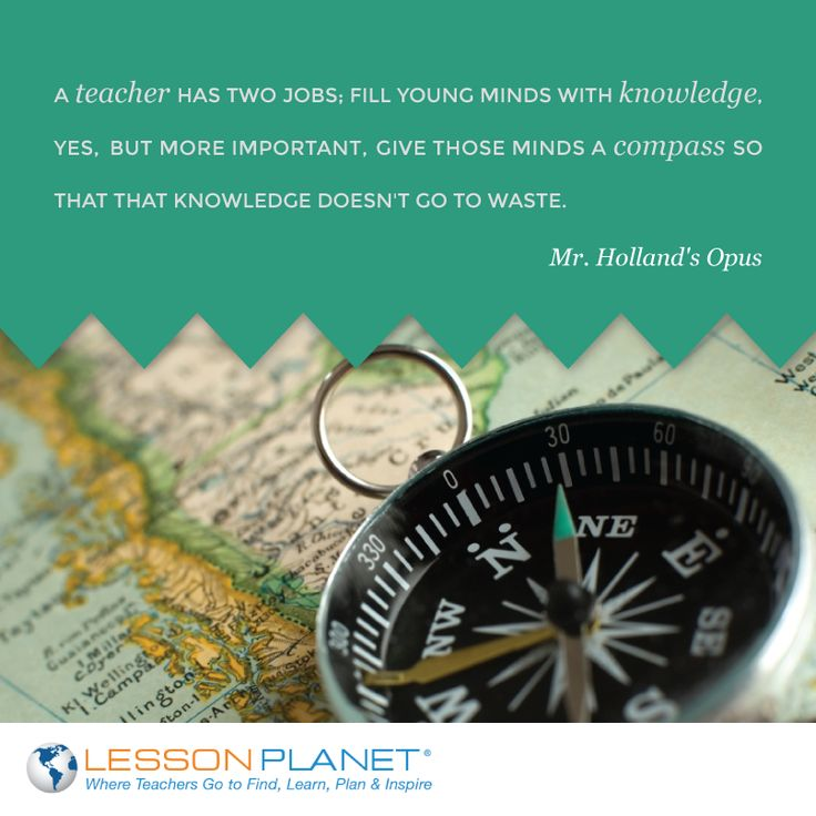 Mr holland opus essay