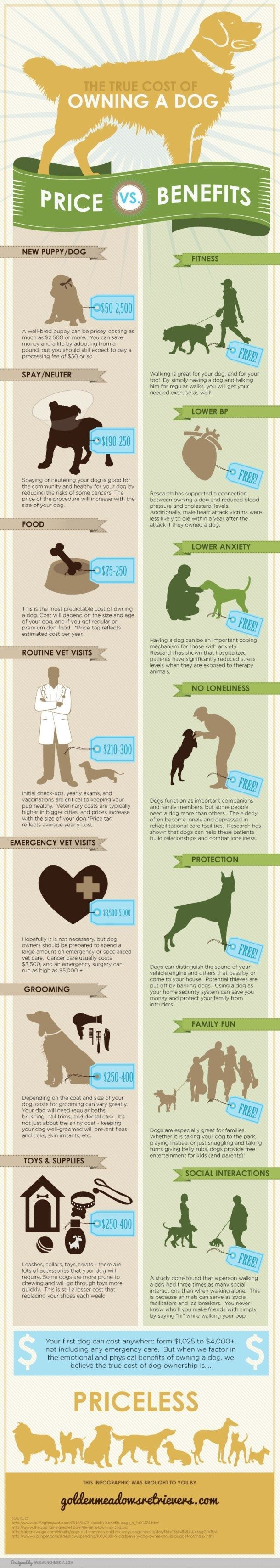"""Cost and benefits of owning a dog. Of course everything about """"owning a dog"""" is a benefit to me."""