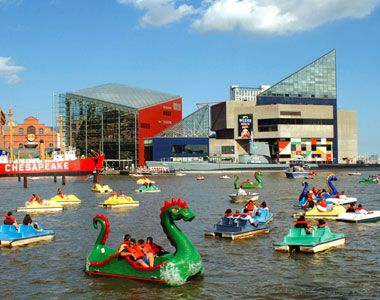 Baltimore, Maryland, United States, North America: Families ride paddleboats in Baltimore's Inner Harbor with the aquarium in the background.