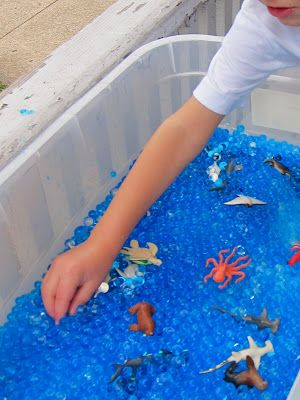 container + waterbeads + water animal toys