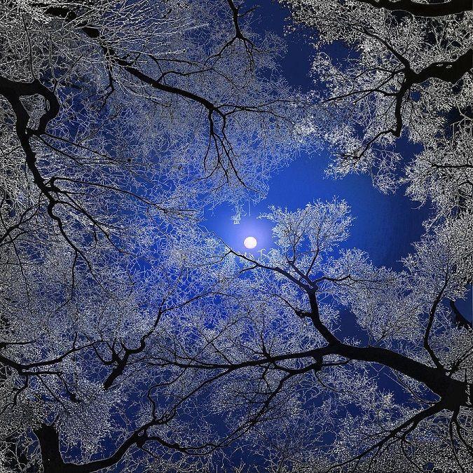 Hold - Nyugodt öröm egy hűséges rejtélyes társsal az örök térben…