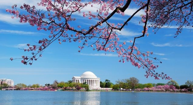 Budget Travel Vacation Ideas: 20 Free Things to Do in Washington, D.C. | Travel Deals, Travel Tips, Travel Advice, Vacation Ideas | Budget Travel