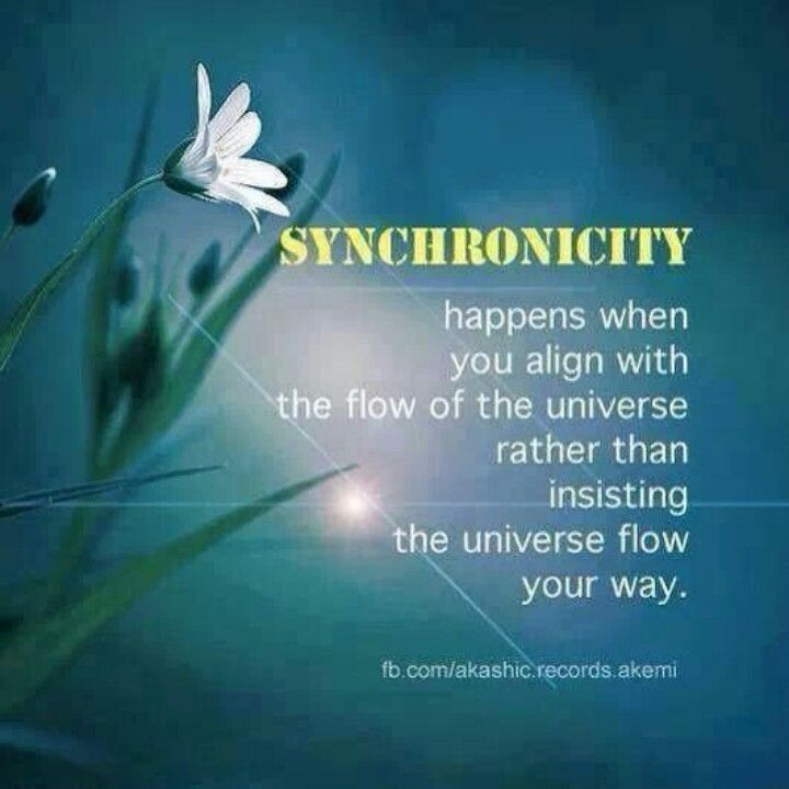 Image result for I am synchronicity