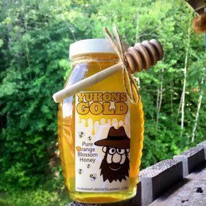 Yukon's Gold (1lb) Artisanal Orange Blossom Honey