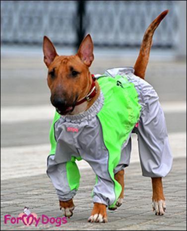 Salopete de Ploaie pentru Caini & Catei --> https://kingmaru.ro/imbracaminte/haine-de-ploaie - Protectie impotriva umezelii - Confort necesar pentru plimbare - Design deosebit  Si nu uita! Transportul este GRATUIT pentru comenzile de peste 300 lei  #hainecaini #imbracamintecaini #accesoriicaini #kingmaru