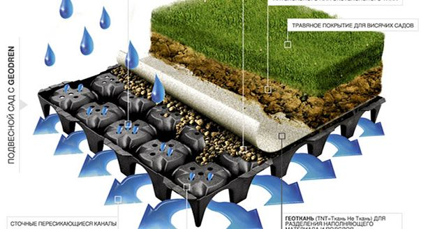 Озеленение крыш— отличное решение проблемы нехватки садов и парков в городе.  На даче устройство кровли из живых растений преобразит любую хозяйственную постройку.
