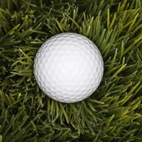 """""""Bad Golf Shots Keep Business Booming"""" GOLF BALL DIVERS scoop up stray golf balls at courses so they can be cleaned & sold to more golfers. It can be lucrative with divers earning  7-12 cents per ball  and making as much as $100,000/year. But the work is grueling & can be hazardous - diving into murky waters or driving heavy trucks. Many golf ball divers work only in the summer when the weather is fair & there are a lot of golfers out on the course - more money-making opportunity!"""
