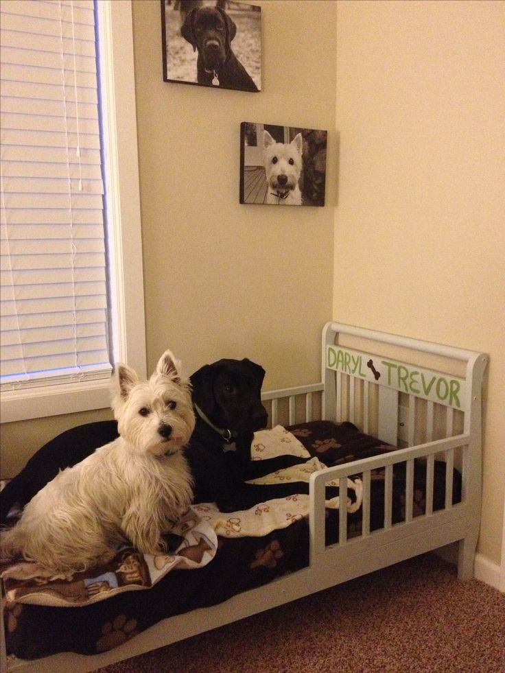 Turn a toddler bed into a dog bed! critters Pinterest