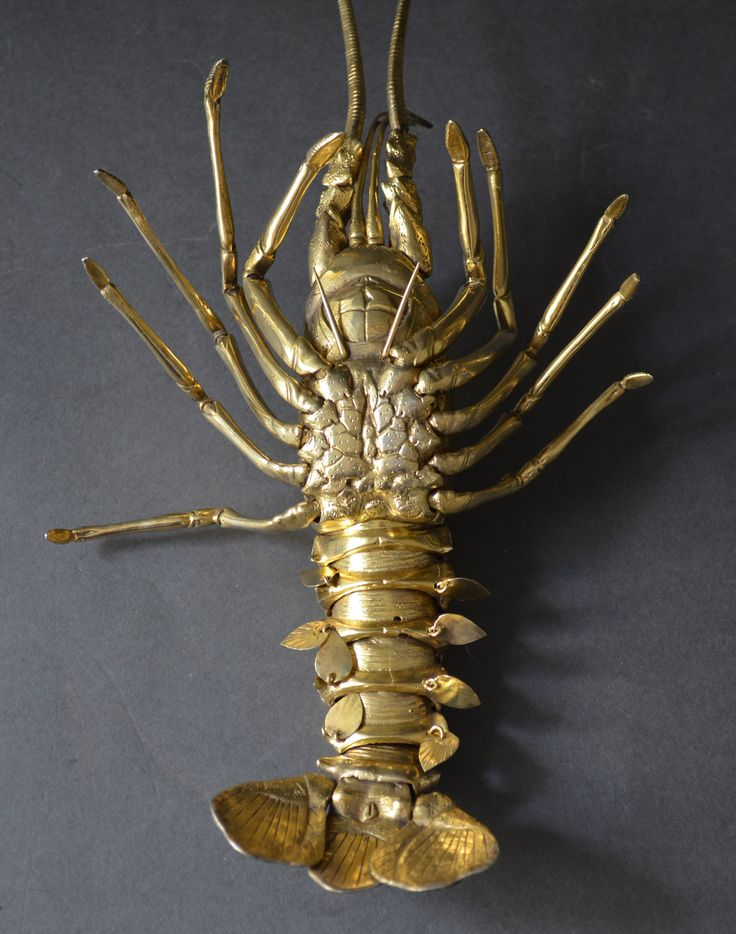 Bottom View of Lobster