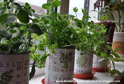 window sill herbs  - like the container idea