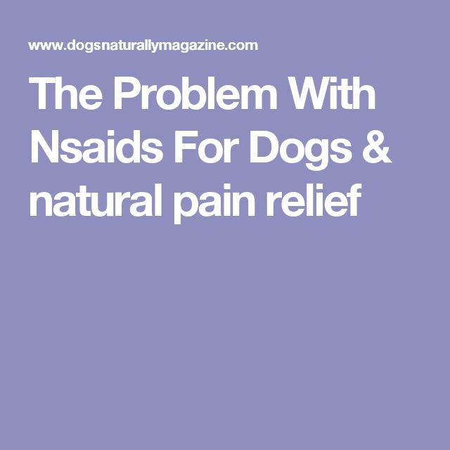 The Problem With Nsaids For Dogs & natural pain relief