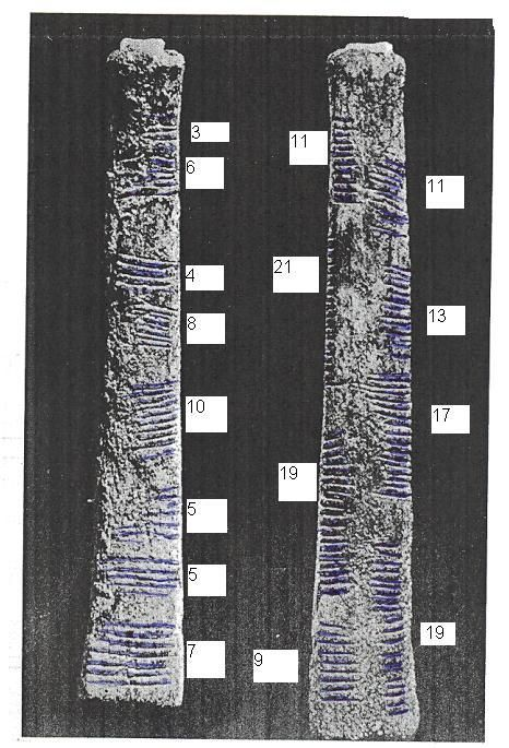 Ishango bone showing the earliest know recording of mathematics