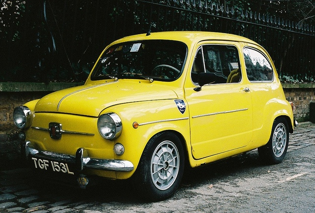 Fiat 600 by Sam Newman
