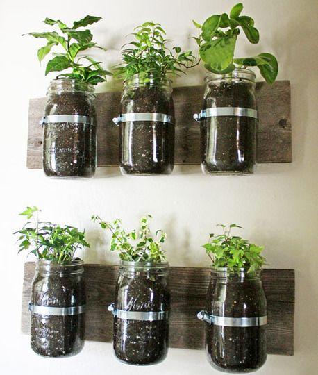 Gardening: Idea, Indoor Herbs, Diy'S, Masons Jars Herbs, Herbs Gardens, Mason Jars,  Flowerpot, Wall Planters, Kitchens Herbs