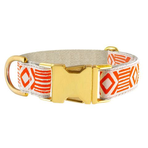 PAPER PLANE - Dog Collar - Out of My Box NZ