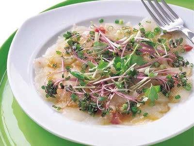 落合 務 さんのたいを使った「まだいのカルパッチョ」。覚えておくと使えるイタリアンの前菜。スプラウトは紫キャベツ、ホワイトセロリなど、なければ貝割れ菜でも。 NHK「きょうの料理」で放送された料理レシピや献立が満載。