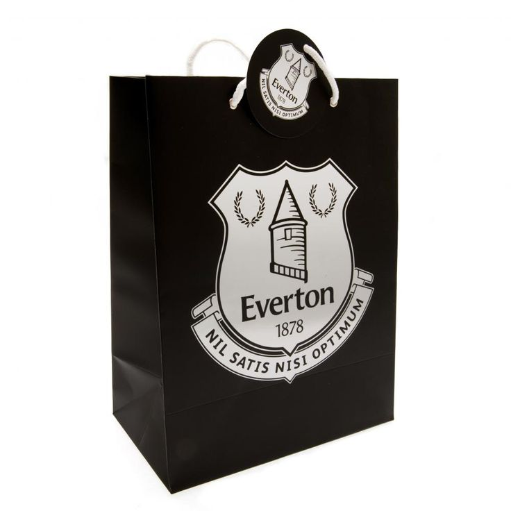 Large Card Gift Bag With Tag Silver Printed Crest Metal Eyelets Approx 24.5cm X 33cm Official Licensed Product Product model: z02gbgev