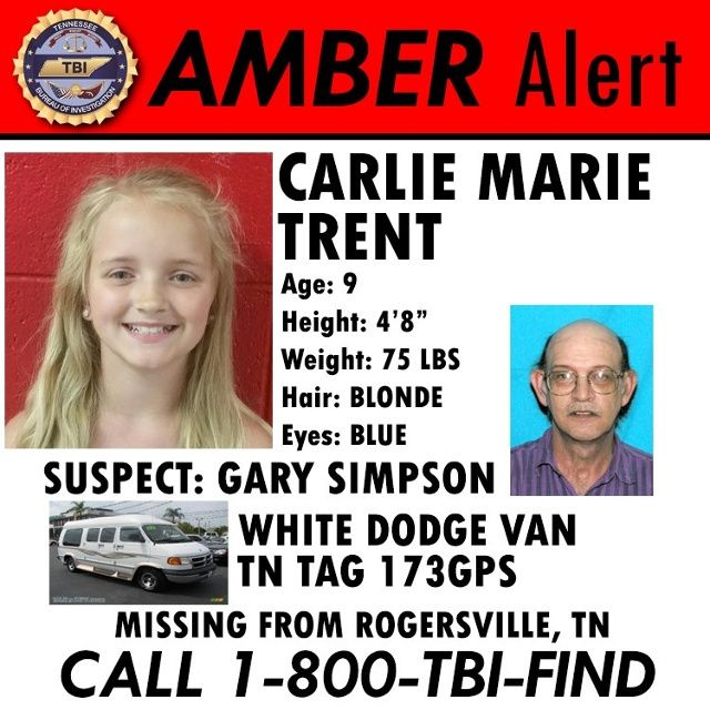 Best 25+ Amber alert update ideas on Pinterest Kidnapping - missing child poster template