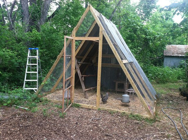Homestead chickens chickencoop a frame chicken coop for A frame chicken