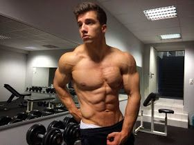 aesthetic muscles  bodybuilding at its best tim gabel