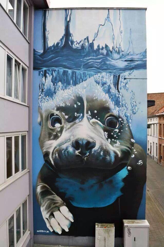 Smates. Street art, mural, swimming dog.