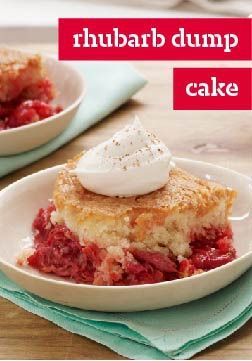 Rhubarb Dump Cake – What makes this dump cake so much better than the old standby? A fresh, juicy filling that celebrates a classic spring ingredient.