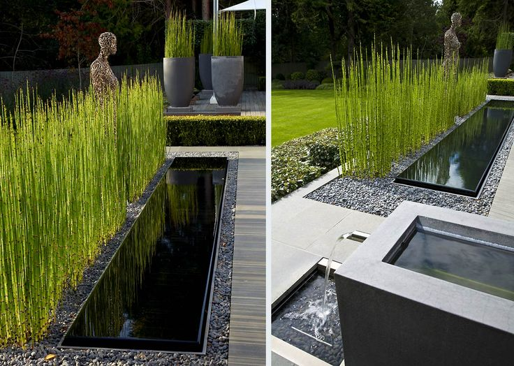 Garden Waterscape - love the background - potted Horestail (that's the only way to keep it under control)!
