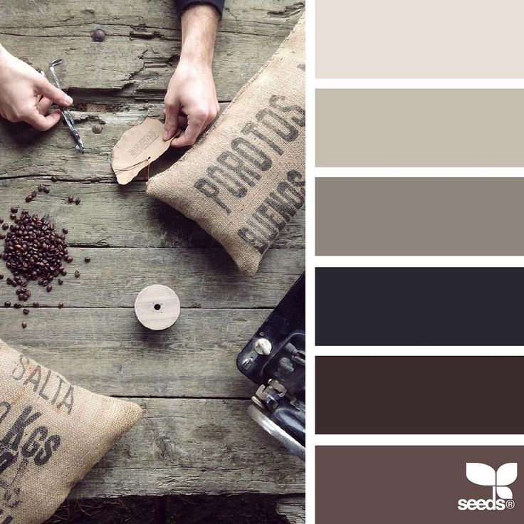 today's inspiration image for { create tones } is by @questoeilmassimo... thank you, Massimo, for another incredible #SeedsColor image share!