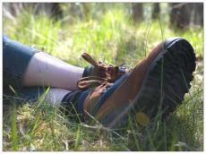Herfsttip: de 5 mooiste wandelingen - Feeling
