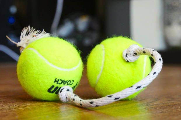 Forget buying overpriced dog toys. Your pups are just going to destroy them anyway.