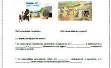 História -Ficha de avaliação 5º ano - Educação Online