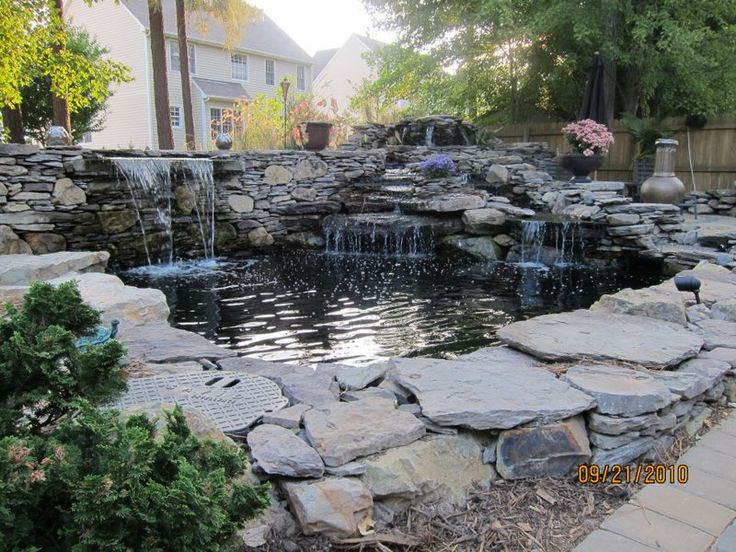 The 25 best pond netting ideas on pinterest fish pond for Backyard pond kits