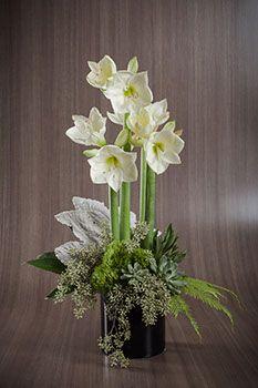 sympathy   flower studio