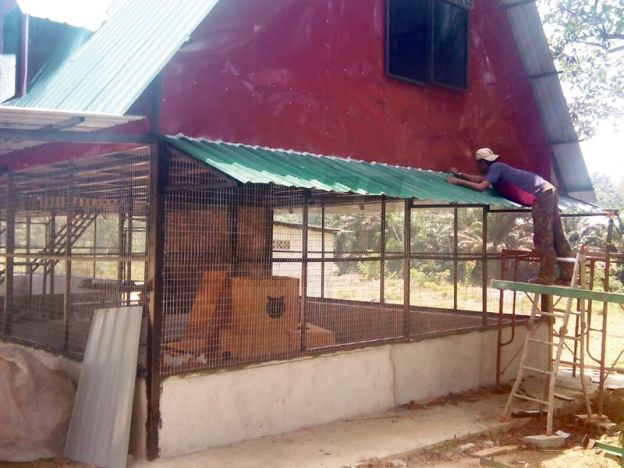Projek amal rumah kucing  Projek rumah perlindungan kucing yang dijangka siap sepenuhnya pada 30 April ini.  JOHOR BAHRU - Sifat kasih dan sayang kepada haiwan peliharaan terutama kucing mendorong Ahli Majlis Bandaraya Johor Bahru (MBJB) Nor Azhar Abdul Hamid 46 memulakan projek amal rumah perlindungan kucing.  Projek yang bermula pada November tahun lalu dan dijangka siap sepenuhnya pada 30 April ini terletak di Jalan Haji Noh Sungai Tiram.  Nor Azhar 46 berkata idea memulakan projek amal…